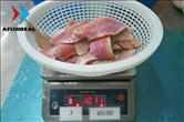 Red Mullet Fillet - Skin On - 100%NW - Size 40/80 - Check Weight after Defrosted